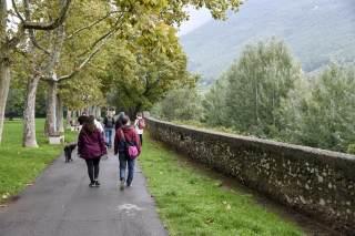 Passeggiate lungo il Bisenzio per scoprire le piante di Prato